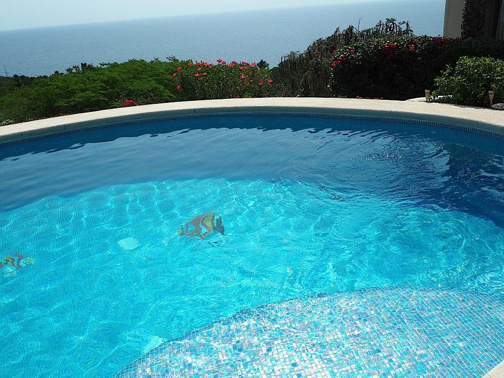 Pool with Rainbow Fish tiles