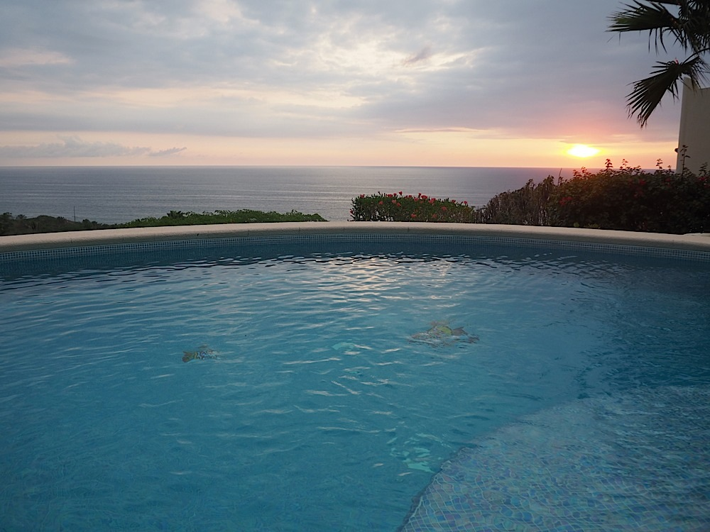 The pool at the casa is amazing.