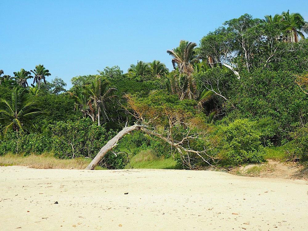 Playa Patzcuaro